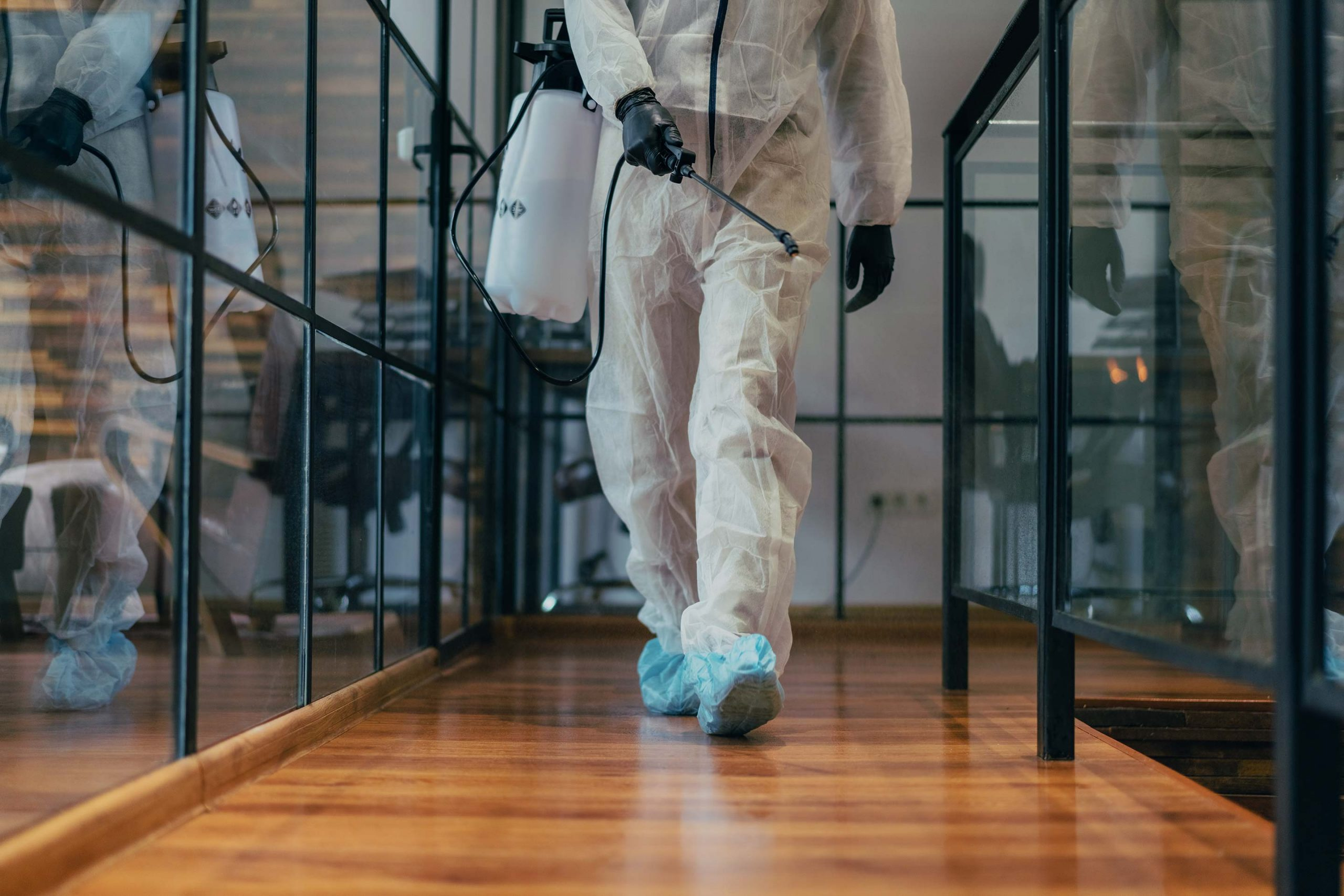 Invest in an anti-microbial disinfectant for your business